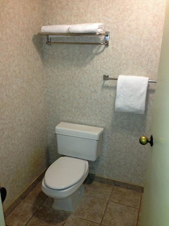 La Quinta Inn & Suites Valdosta / Moody AFB: bathroom 3