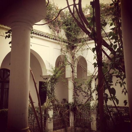 Riad Hayati: view from room