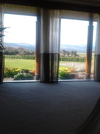 Ballygarry House Hotel & Spa: The view from the beds in the relaxation room