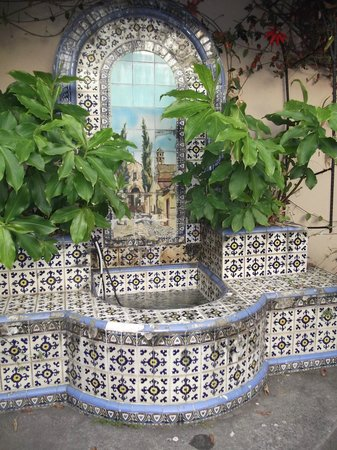 Hostel Casa Del Parque: traditional garden fountain creates an attractive centerpiece in the garde/dining area