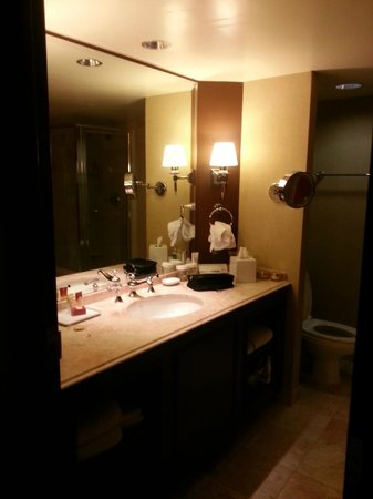 Paris Las Vegas: Our bathroom