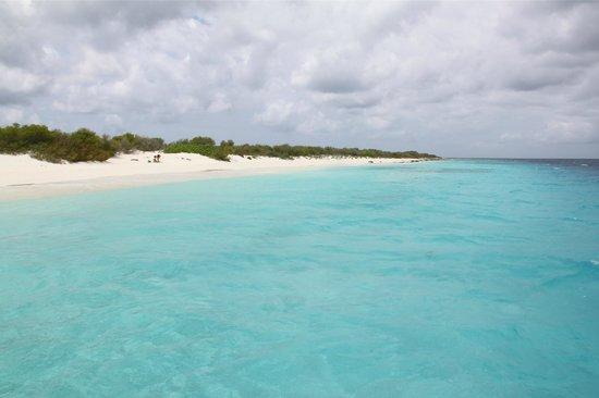Bonaire: Prachtig strand