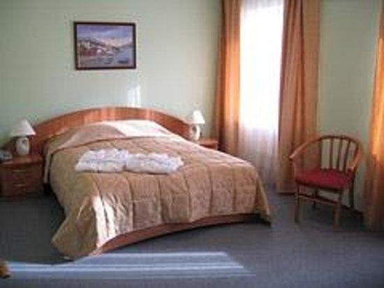 Hotel Konakovo