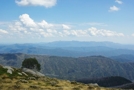Bogong Horseback Adventures: Just some of the spectacular views