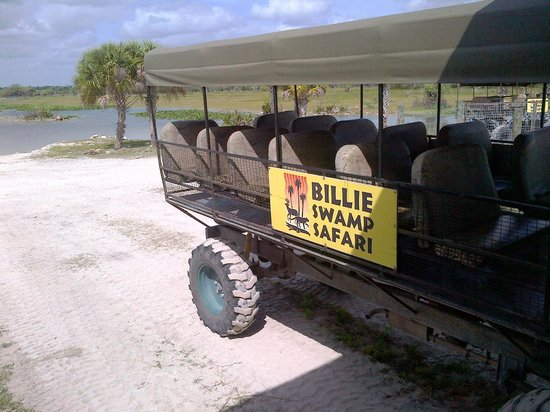 Billie Swamp Safari: More enjoyable than expected