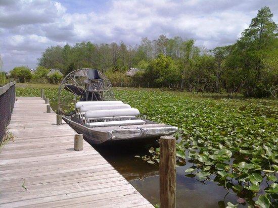 Billie Swamp Safari : A scene near the Airboat dock