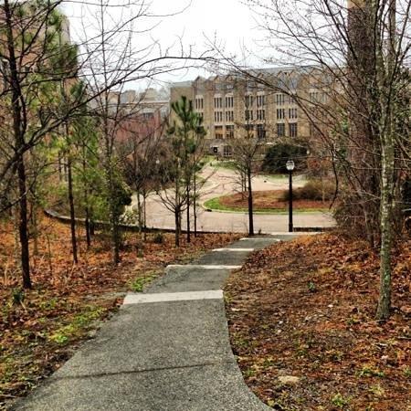 Duke University: journey to success