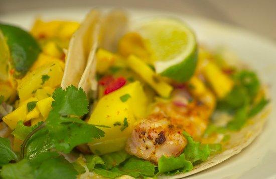 Salsa Brava : Blackened Sea Bass Tacos with Fresh Mango Salsa