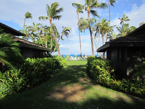Royal Lahaina Resort: Cottages, hotel grounds