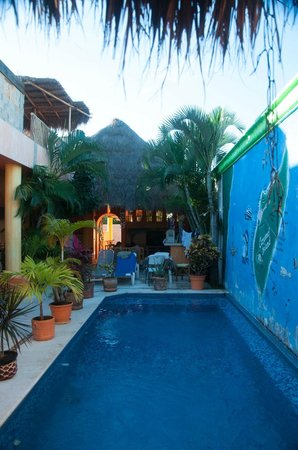 Casita de Maya : pool and hotel area