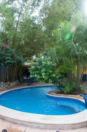 Hotel Medio Mundo: hotel pool