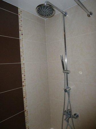 Occidental Grand Punta Cana: 2nd room broken trickle shower