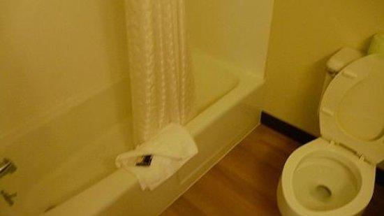 Red Roof Inn Raleigh Southwest - Cary: Bathroom