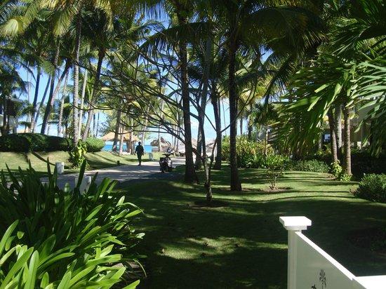 Paradisus Punta Cana Resort: Areas Comunes y Jardines