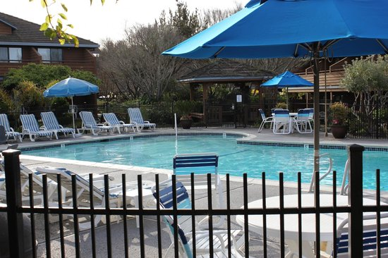 BEST WESTERN Seacliff Inn: Pool