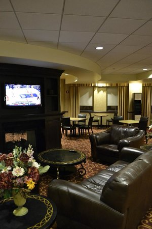 Hampton Inn and Suites Columbus Downtown: The lobby / common area with nice seating & TV.