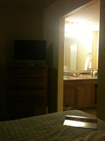 Wine Valley Inn & Cottages: standard room tv & sink area