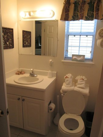 The Cozy Inn: Generously stocked bathroom, more under cabinet!
