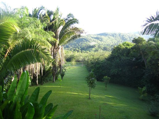 Inn the Bush Eco-Jungle Lodge: Unobstructed view from the verandah of Harpy Eagle Cabana