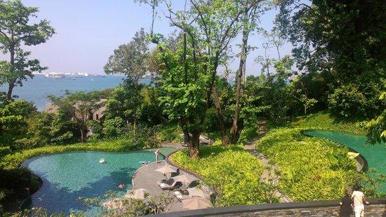 كابيلا سنغافورة: Freeform Pool with the sea in the background