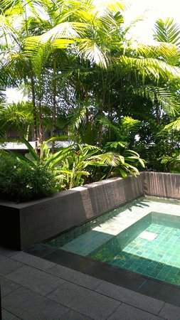 Capella Singapore: Outdoor private Plunge Pool