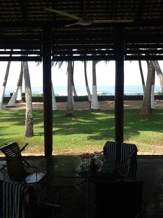 Apa Villa Thalpe: bungalow view