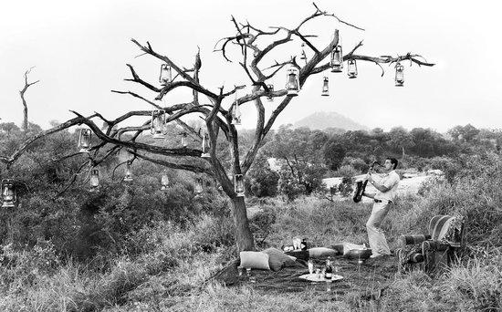 Londolozi Pioneer Camp 사진