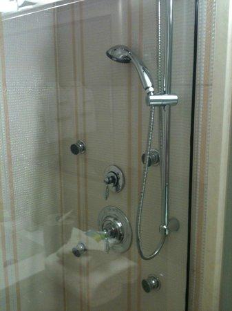 Radisson Hotel Orlando - Lake Buena Vista: shower