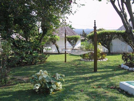 Royal Decameron Club Caribbean: The gardens
