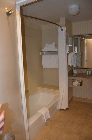 Comfort Suites Barstow: Bathroom