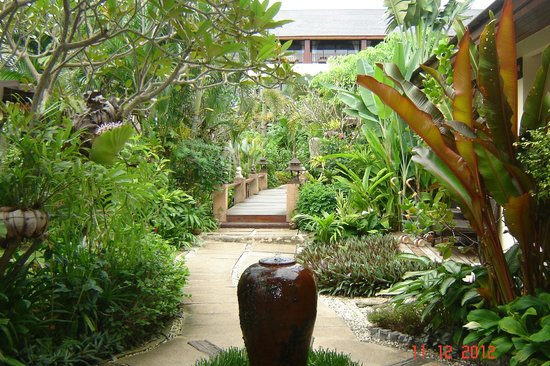 Samui Jasmine Resort: Beautiful gardens