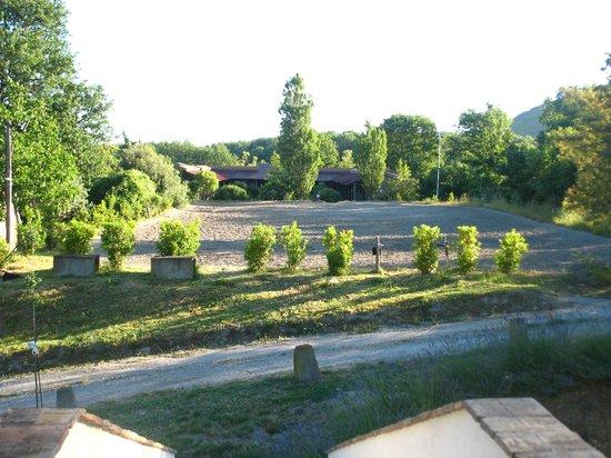 Azienda Agrituristica Borgo Roncone: vista da una finestra