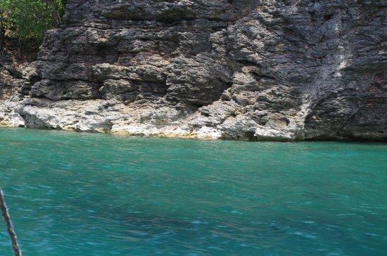 Campomanes Bay