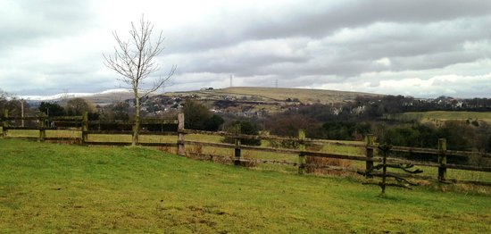 Fernhill Bed and Breakfast: One of our stunning views