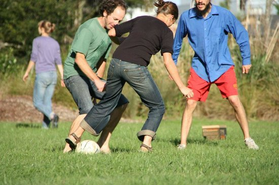 Fat Cat Eco Backpackers: Football