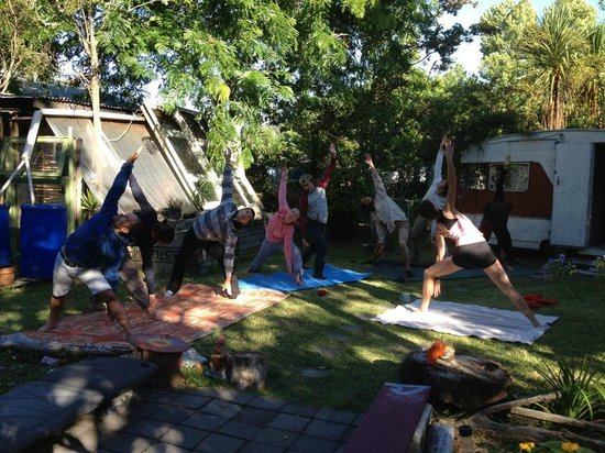 Fat Cat Eco Backpackers: Skill sharing - yoga
