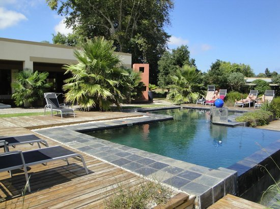 Lily Pond Country Lodge: Swimming Pool