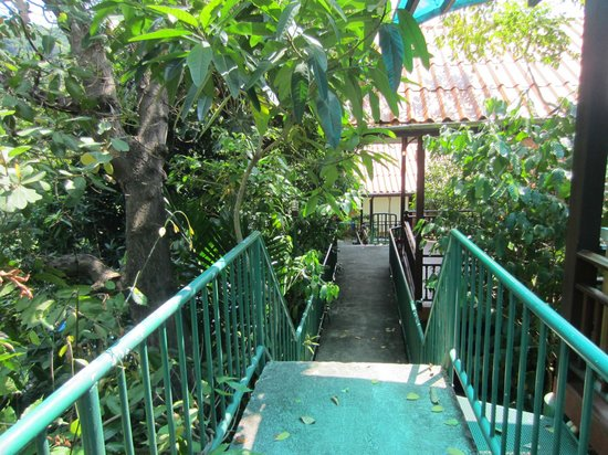 J.J. Bungalow & Guest house: Stairs