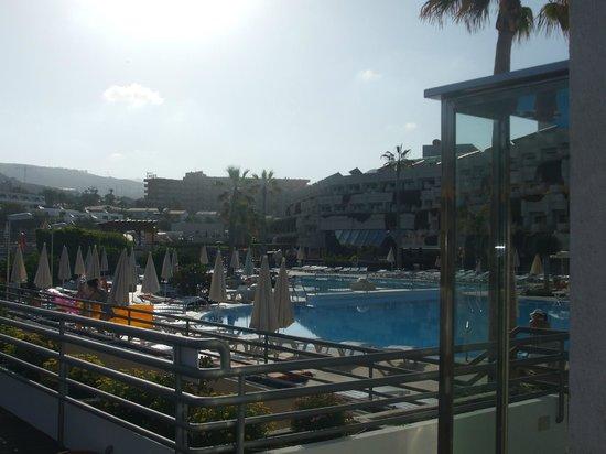 Hotel Gala: Pool side