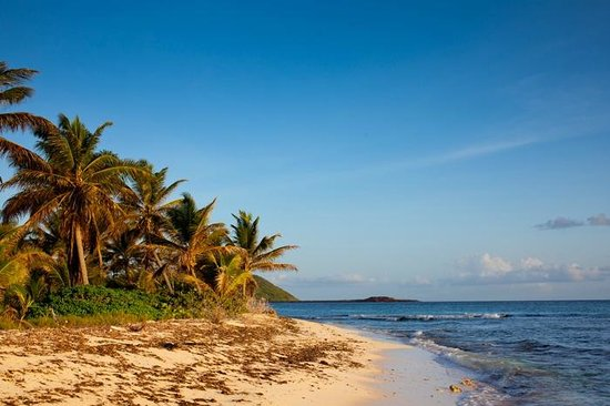 Palm Island Resort & Spa: paradise