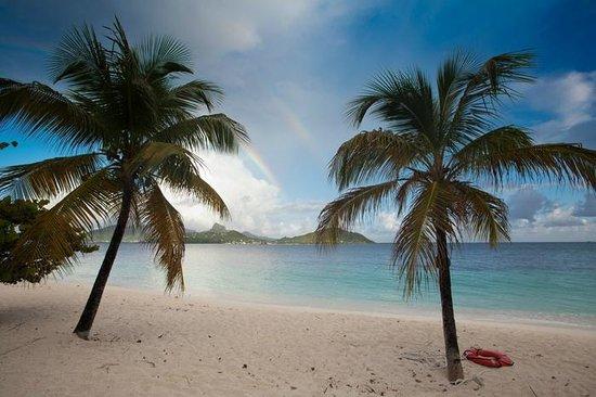 Palm Island Resort & Spa: did you see the rainbow?