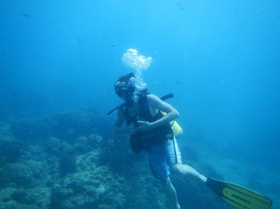 Windjammer Landing Villa Beach Resort : diving company on site