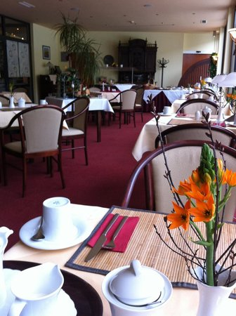 Balneolum Hotel: Breakfast room from far end (away from food area) - probably marketed at the older female guest.