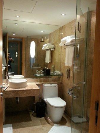 โรงแรมฮอลิเดย์ อินน์ บางกอก: 洗手间