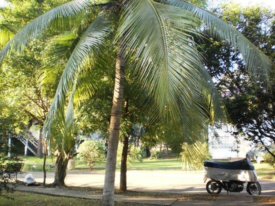 Jamraka Homestay : noch eine Aussicht