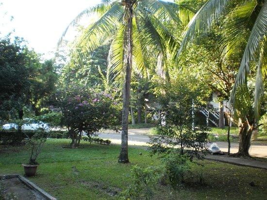 Jamraka Homestay : Aussicht