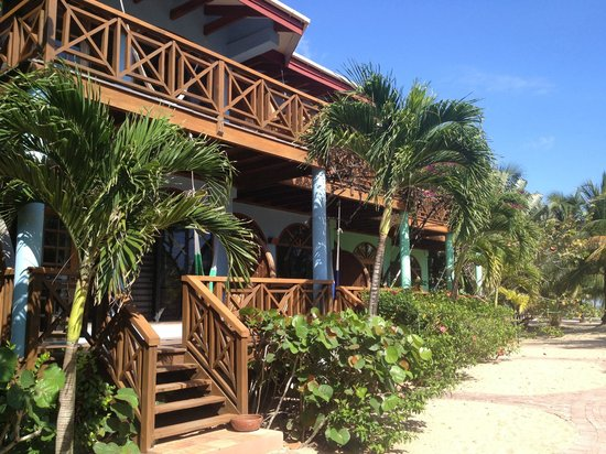 Hamanasi Adventure and Dive Resort: Beachfront Rooms