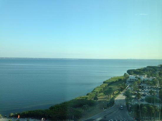 Westin Tampa Bay: View from 11th floor room.