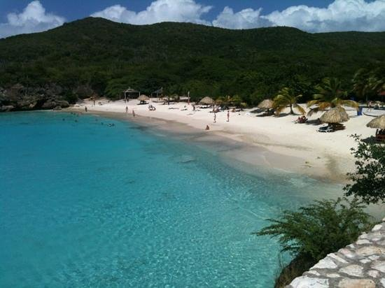 Poppy Hostel Curacao: gran kenepa, a mais bonita praia da ilha ao meu ver!