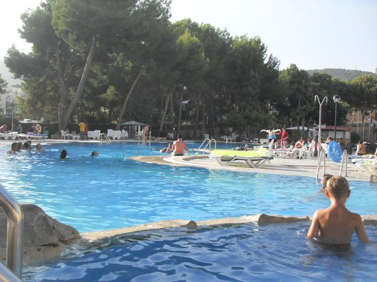 Piscina picture of bq belvedere hotel palma de mallorca for Piscina palma de mallorca